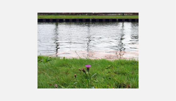 Fotografie voor Brabant Cultureel Tilburg